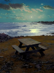 Picnic Table in Moonlight