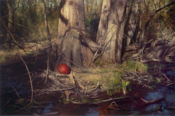 Red Ball in Early Spring